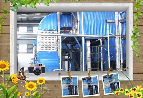 生物质快装链条锅炉DZL2-1.25参数、报价及运行成本